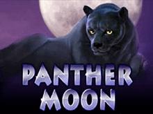 Panther Moon в Вулкан казино