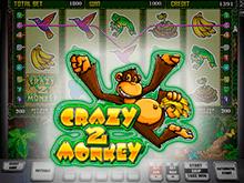 Игровой онлайн-автомат Crazy Monkey 2