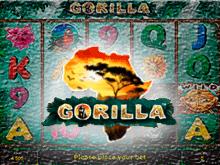 Бесплатный игровой автомат Gorilla